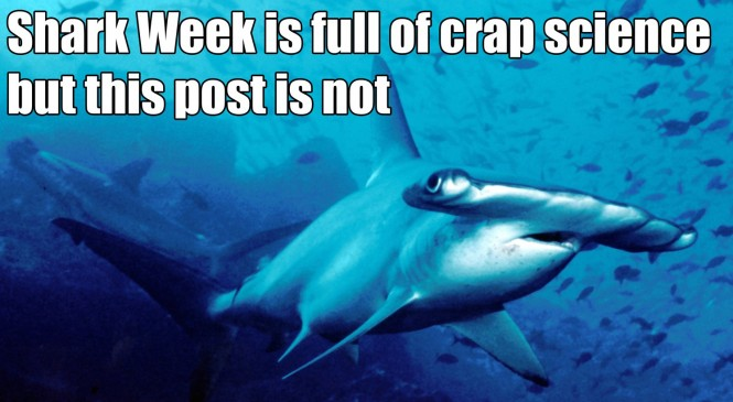 shark-featured-image-e1407901595863-665x365